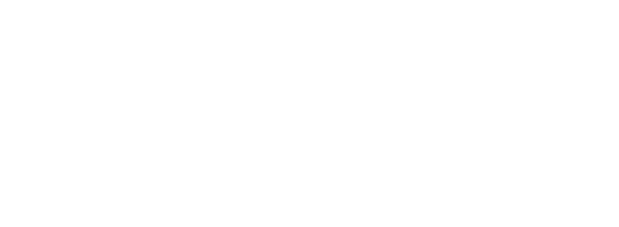 Iris Inspection machines